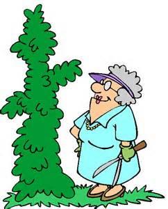 gardening 7