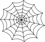 spider-web-black-white