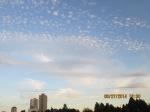 sky shots (27)